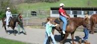 horse-program
